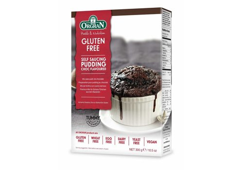 Orgran Chocolade Cakemix (Self Saucing Pudding Mix)