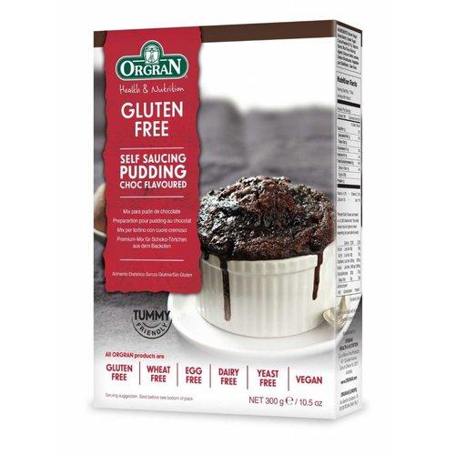Orgran Chocolade Cakemix (Self Saucing Pudding Mix)