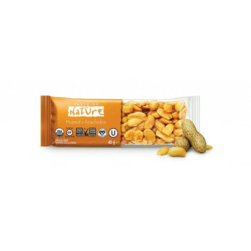 Taste of Nature Peanut Organic Nut Bar Biologisch