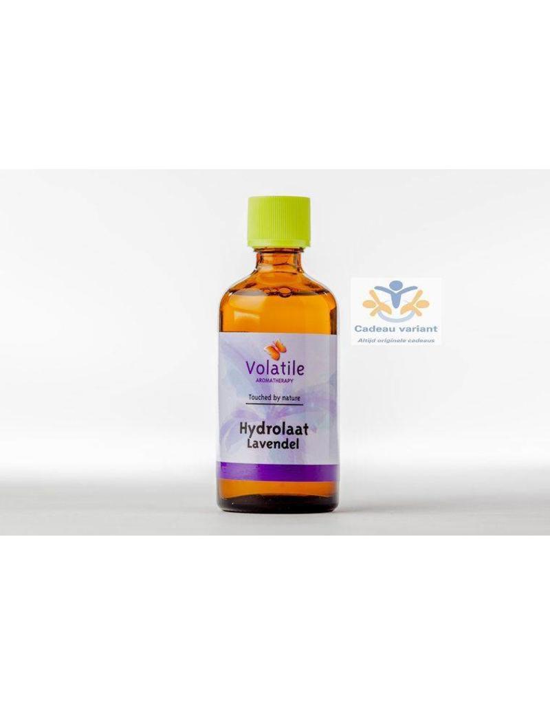 Volatile Lavendel hydrolaat
