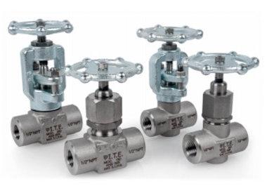 Forged globe valves