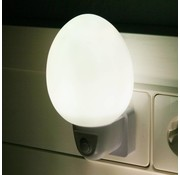Ansmann Ansmann NL-2W Eivormig LED Nachtlampje - White