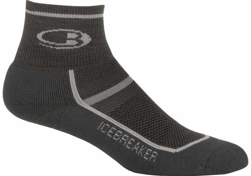 Icebreaker Icebreaker Multisport Lite Cushion Mini Socks - Men's