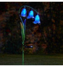 Smart Garden SMART GARDEN BLUEBELLS
