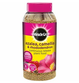 Miracle-Gro AZALEA, CAMELLIA & RHODODENDRON CONTINUOUS RELEASE PLANT FOOD 1KG SHAKER JAR