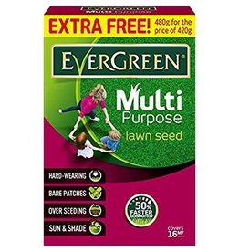 EVERGREEN MULTI-PURPOSE GRASS SEED 480g