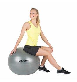 Hammer Fitness Hammer Fitness - Fitnessbal - Ø 65 cm - Grijs