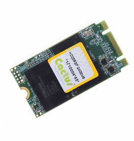 Cactus Technologies Limited KD64GFI-240SM6 M.2 2242