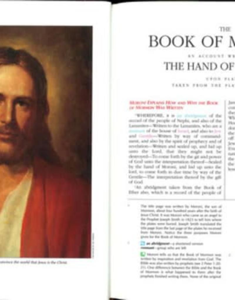 The Book of Mormon for Latter-day Saint Families by Thomas R. Valletta