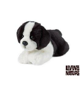 Living Nature Knufffel Hond Border Collie, 23 cm
