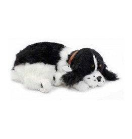 Perfect Petzzz Perfect Petzzz Hond Engelse Cockerspaniël