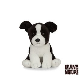 Living Nature Border Collie Knuffel, 15 cm