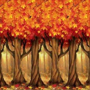 Scenesetter Herfst bomen