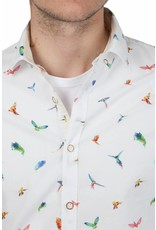 Colours & Sons ® Overhemd Parrot