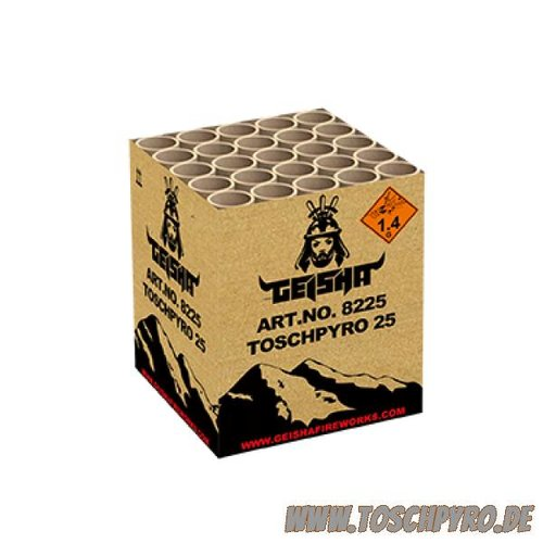 Toschpyro® Batterie 25 (NEU)