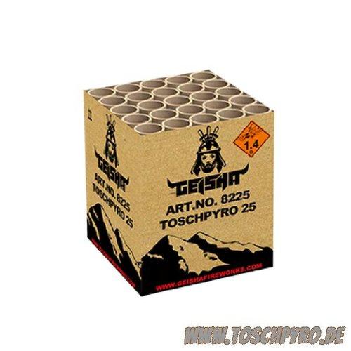 Toschpyro® Batterie 25