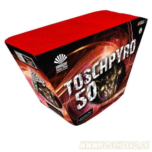 Toschpyro® Batterie 50    2er