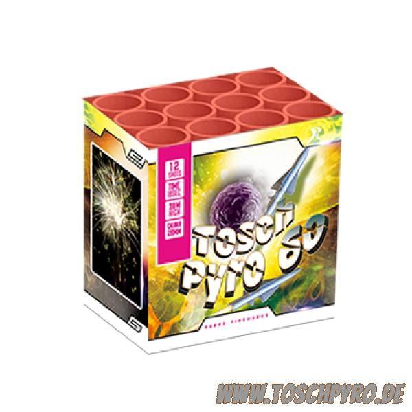 Toschpyro® Batterie 60 (a)