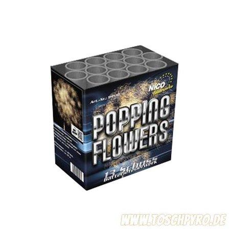 Nico Europe Popping Flowers