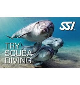 SSI Try Scuba Diving