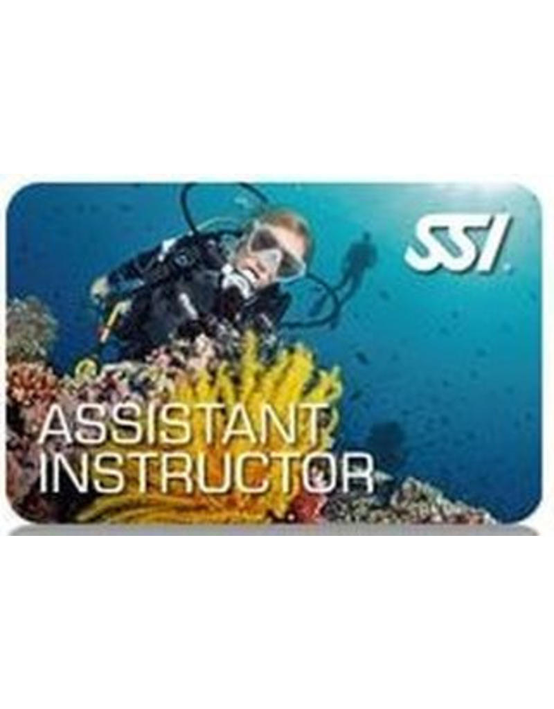 SSI Assistent Instructeur