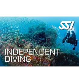 Independent diver SSI specialty instructor
