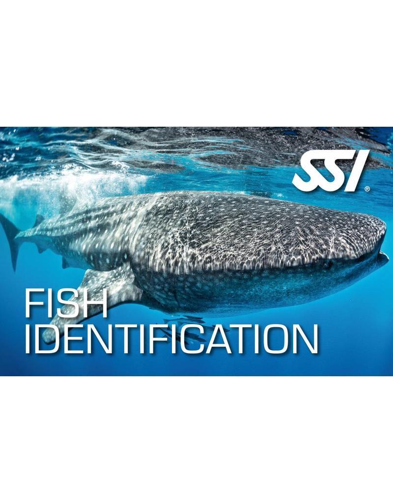 Fish identification SSI specialty instructor seminar