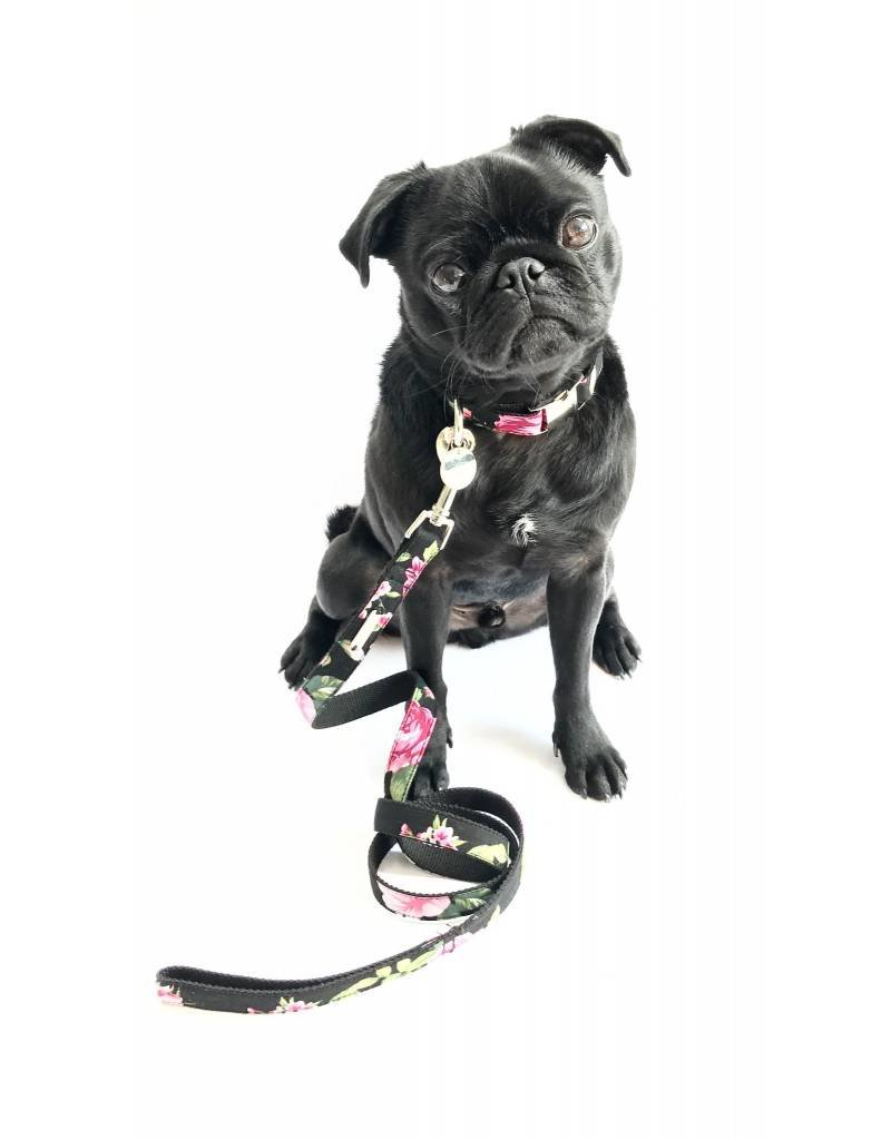 PERCY AND CO SET COLLAR LEAD CHELSEA