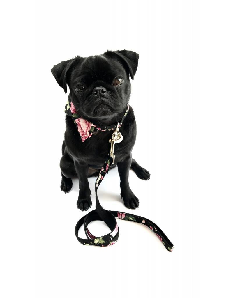 PERCY AND CO SET COLLAR BOW TIE CHELSEA