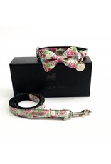 PERCY AND CO SET COLLAR BOW TIE CLIFTON
