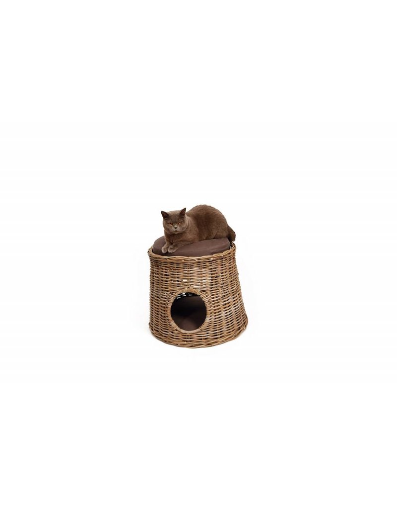 51 DEGREES NORTH DAMAR  CAT HOUSE