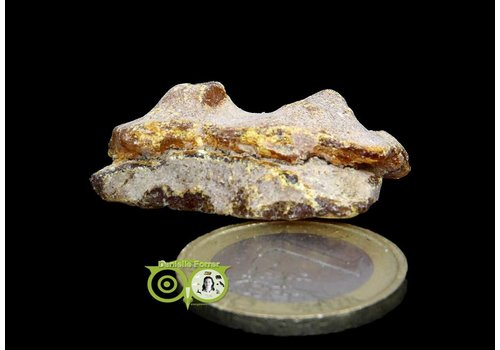 Amber ( Barnsteen) Ruw PH-9-3,5