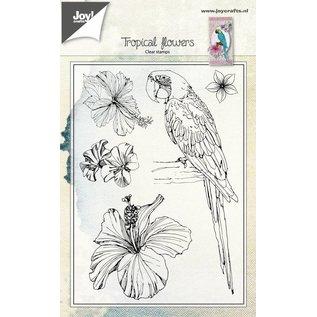 Joy!Crafts Clearstempel - Papagaai en bloemen